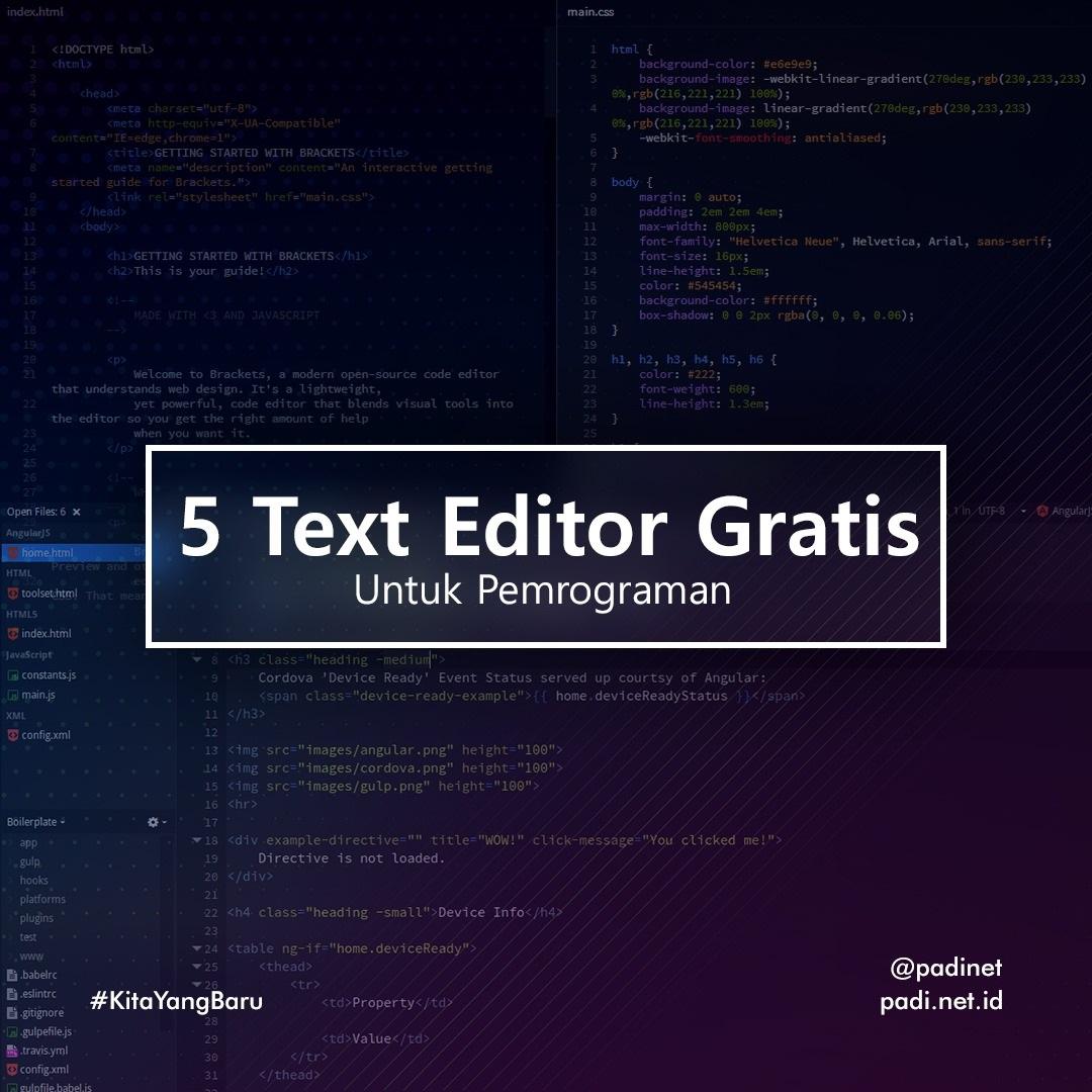 text editor pemrograman